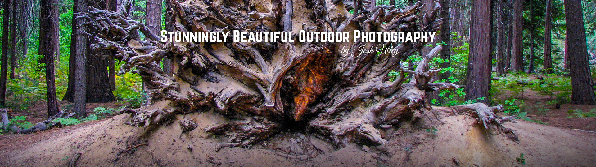 Stunningly Beautiful Outdoor Photography by Josh Utley